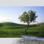 SENTIMENTO D'INFINITO, 2004, 70 X 100 cm